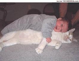 pisica-si-ccopilul.jpg