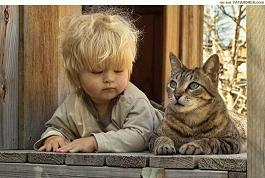 pisicul-si-copilul.jpg
