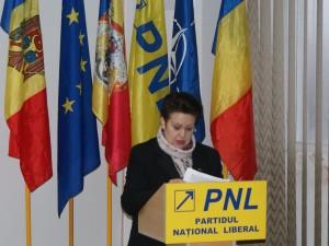 La sedinta DPN a PNL