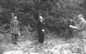 Asasinarea lui Antonescu