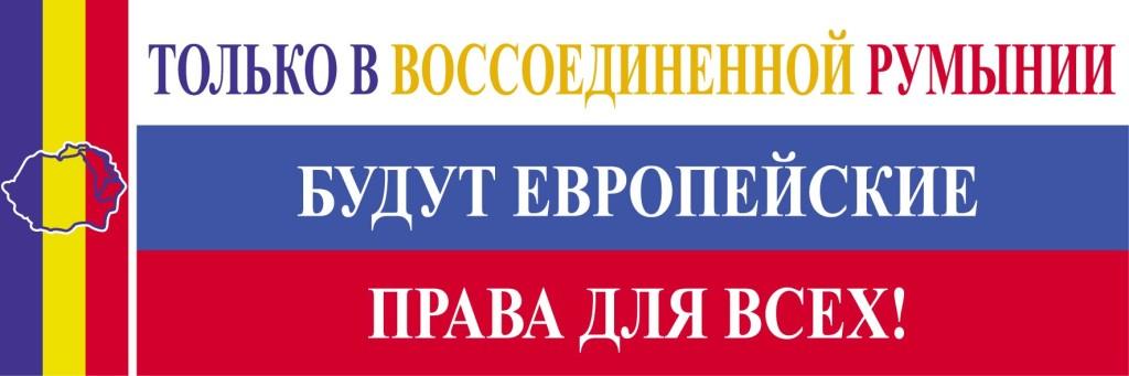 Banner nr29