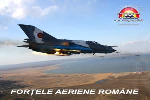 armata-romana-forte-terestre-si-aeriene-12