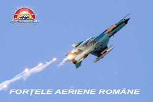armata-romana-forte-terestre-si-aeriene-14