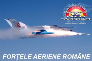 armata-romana-forte-terestre-si-aeriene-3
