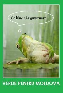 verde-broasca