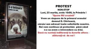 protest Prrimarie